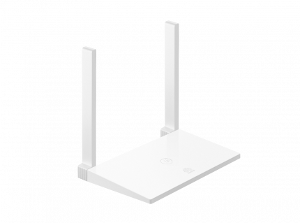 Big Router WS 318N